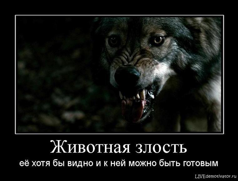 Животная злость - её хотя бы видно и к ней можно быть готовым