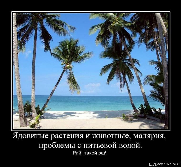 http://livedemotivator.ru/uploads/posts/2010-12/rznqq93sq3.jpg