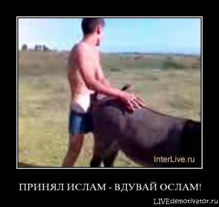 Таджик ебет осла